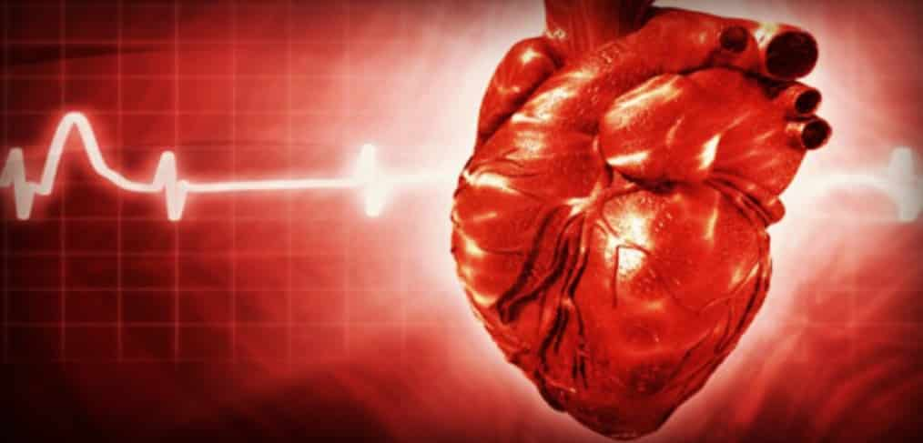 The Most Common Medical Tests for Heart Disease
