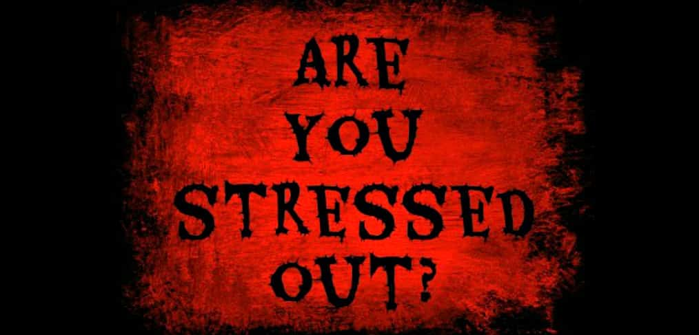 Are You Stressed Out?