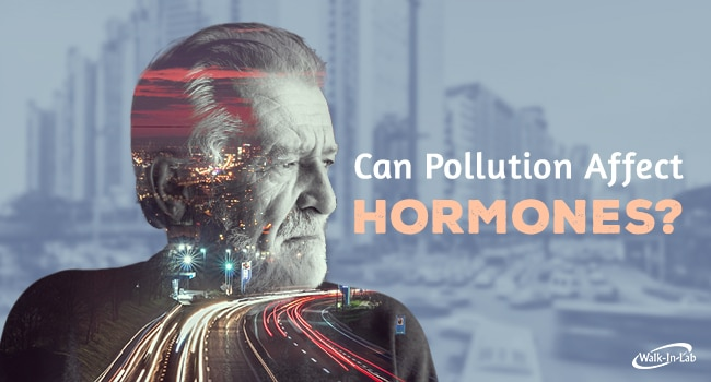 Can Pollution Affect Hormones?