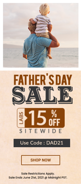Fathers Day Sale Banner
